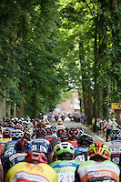 peloton up the Tiegemberg<br /> <br /> 69th Halle-Ingooigem 2016 (200km)