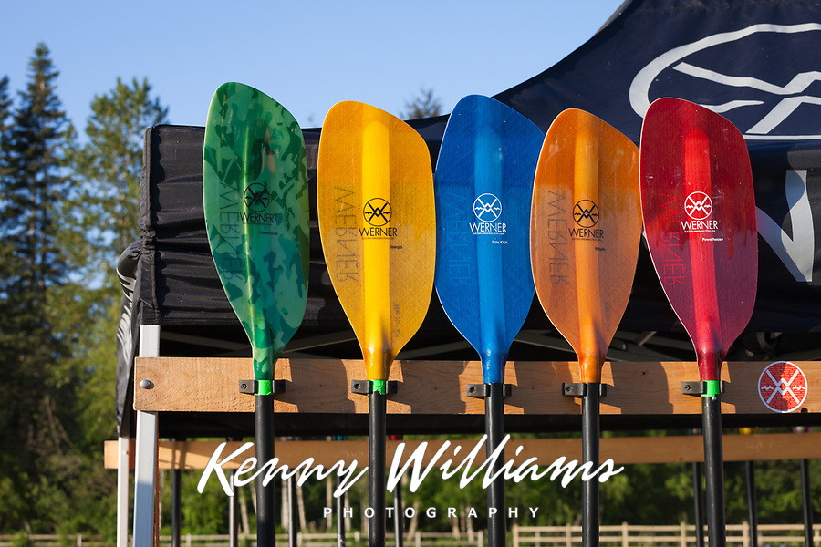 Colorful Paddles, Northwest Paddling Festival 2016, Lake Sammamish State Park, Issaquah, WA, USA.