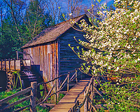 Cable Mill in Spring, Great Smoky Mountains National Park, Cades Cove, Southern Appalacians, Tennessee