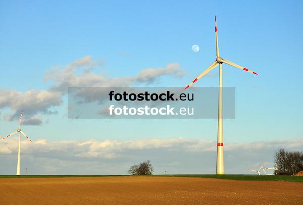 Windrad auf einem Feld im Abendlicht, dahinter der Mond