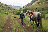 USA, Oregon, Joseph, Cowboy Todd Nash prepares for a cattle drive up Big Sheep Creek