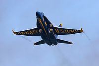 Blue Angels F-18 Hornet with vapor