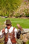 Barn Owl at the Locarno Bird Show, Falconry Show (Falconeria Locarno)