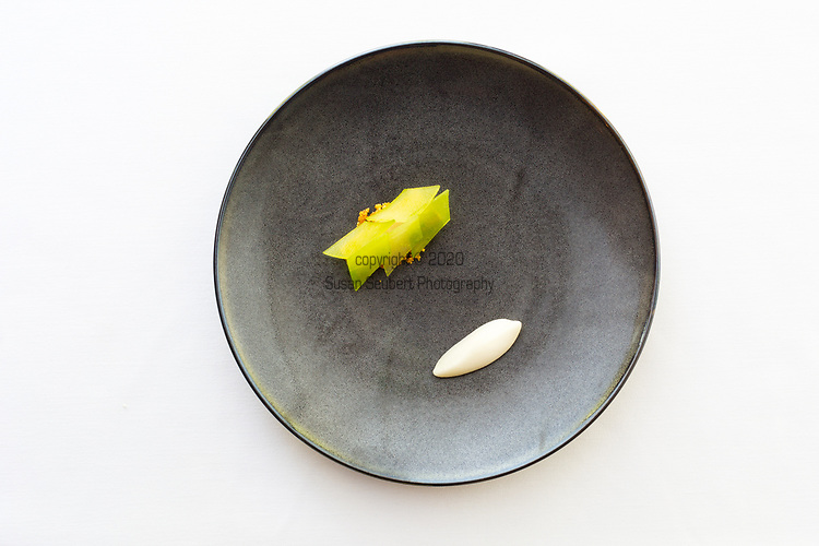 Fois Gras, apple, smoked hazelnut at Castagna Restaurant in Portland, OR, a clean-lined, minimalist restaurant serving fixed-price, high-end modernist Northwest dinners.