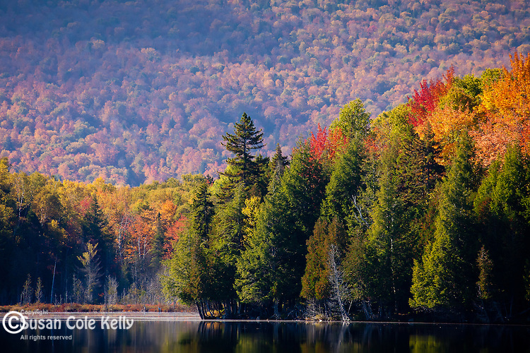 Fall foliage at Prong Pond, Piscataquis County, ME, USA