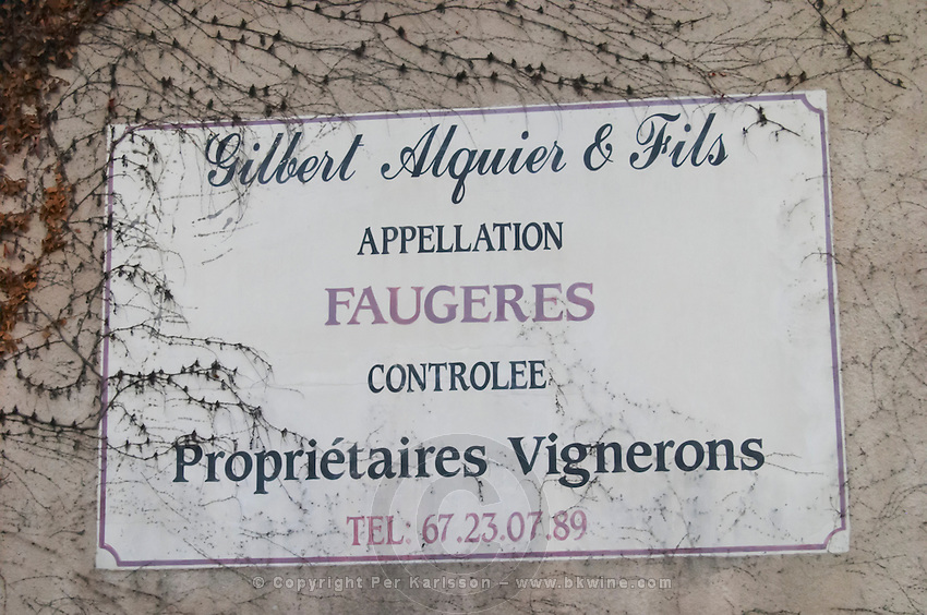 Gilbert Alquier and Fils Faugeres, wine makers. Faugeres. Languedoc. France. Europe.