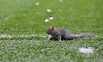 211213 QPR v Leicester City