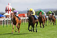 Horse Racing 2018-08