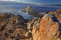 Point Lobos State Reserve, CA<br /> Lingering offshore fog bank on the Pacific with rugged coastal rocks in the foreground