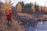 Woman hunting ruffed grouse