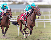 HALLANDALE BEACH, FL - FEB 3:Thewayiam #1 trained by H.Graham Motion with Jose Ortiz in the irons wins the $100,000 Sweetest Chant Stakes (G3) at Gulfstream Park on February 3, 2018 in Hallandale Beach, Florida. (Photo by Bob Aaron/Eclipse Sportswire/Getty Images)