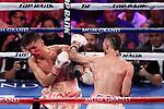 Jos&eacute; Pedraza venci&oacute; por DU a Antonio Mor&aacute;n. <br /> MGM Grand, Las Vegas, Nevada, USA. World Boxing Organisation Latino Lightweight Title.