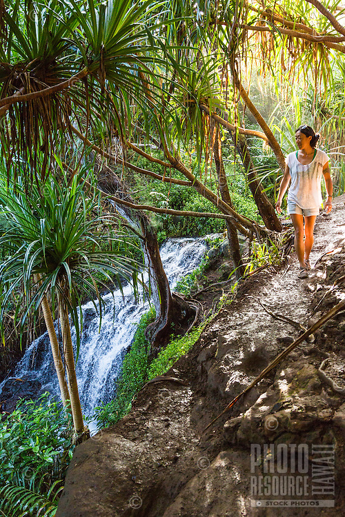 A young woman hikes past a waterfall on the edge of a trail to Queen's Bath, North Shore of Kaua'i.