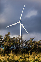 A wind turbine at the Kahuku Wind Farm, Kahuku, O'ahu.