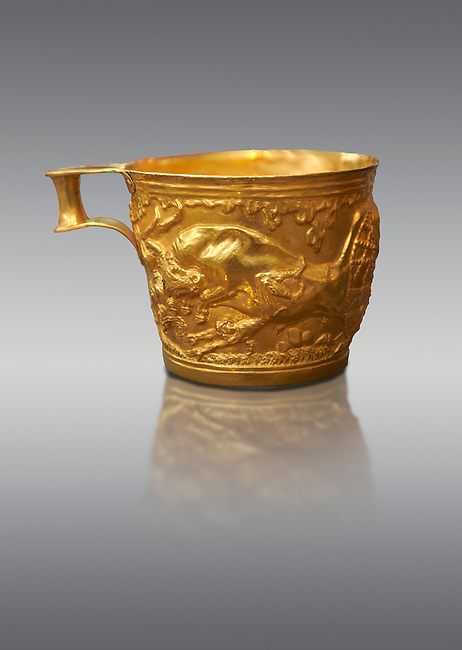 Vapheio type Mycenaean gold cup depicting a wild bull hunt side C , Vapheio Tholos Tomb, Lakonia, Greece. National Archaeological Museum of Athens.  Grey Background<br /> <br /> <br />  Two masterpieces of Creto - Mycenaean gold metalwork were excavated from a tholos tomb near Lakonia in Sparta in 1988. Made in the 15th century BC, the gold cups are heavily influenced by the Minoan style that was predominant in the Agean at the time. The bull hunt was popular with  Mycenaean  and Minoan artists and symolised power and fertility. The distinctive shape of the cup is kown as 'Vapheio type'.