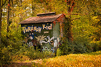 Pokemon Kid barn in Cameron, NC in autumn