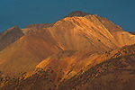Sunset light on Mt. Barcroft, White Mountains, near Bishop California