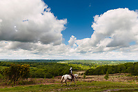 Horse rider, Ashdown Forest, Sussex, UK, May 20, 2017. Picturesque Ashdown Forest stretches across the countries of Surrey, Sussex and Kent, and is the largest open access space in the South East of England. It is famous as the geographical inspiration for the Winnie the Pooh stories and is popular with fans of the characters.