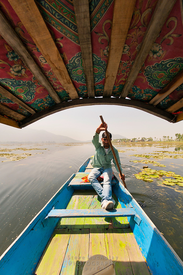Shikara rower, Dal Lake, Srinagar, Kashmir, India.