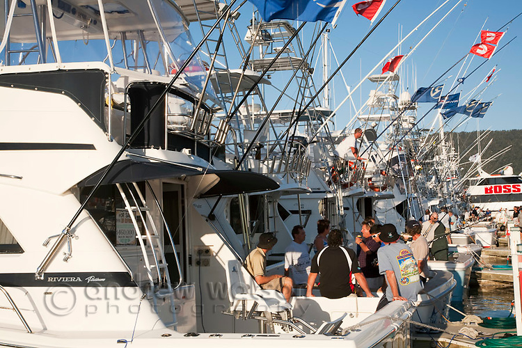 Game fishing boats moored in Cairns for a black marlin fishing tournament.  Cairns, Queensland, Australia