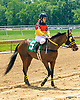 Enticing Evening with Larissa Biess aboard after The International Ladies Fegentri race at Delaware Park on 6/13/17