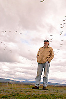 Man watching Snow Geese flying over Skagit Valley. Skagit County, Washington.