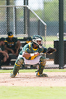 Oakland Athletics catcher Santis Sanchez (44) during an exhibition game against Team Italy at Lew Wolff Training Complex on October 3, 2018 in Mesa, Arizona. (Zachary Lucy/Four Seam Images)