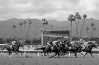 ARCADIA, CA  JUNE 16: The field of the Summertime Oaks (Grade ll) on June 16, 2018 at Santa Anita Park in Arcadia, CA. (Photo by Casey Phillips/Eclipse Sportswire/Getty Images)