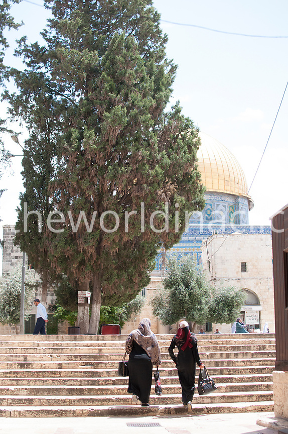 ISRAEL, East Jerusalem, two women climbing the stairs,  Al Aqsa Mosque,
