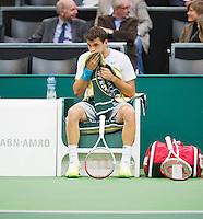 11-02-13, Tennis, Rotterdam, ABNAMROWTT,Grigor Dimitrov