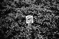 Switzerland. Canton Ticino. Lugano. A sign in a garden bush prohibits any dogs to defecate. No dogs allowed. © 2002 Didier Ruef
