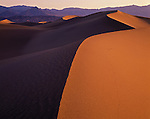 Death Valley National Park, CA<br /> Curving ridges of the sand dunes accentuated by the rising sun with Grapevine Mountains in the distance at Mesquite Flat near Stovepipe Wells