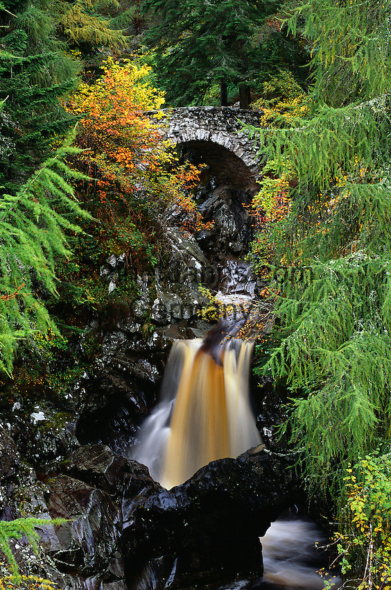 Great Britain, Scotland, Perth and Kinross, near Pitlochry: Falls Of Bruar in autumn | Grossbritannien, Schottland, Perth and Kinross, bei Pitlochry: Falls Of Bruar Wasserfall im Herbst
