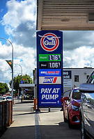 170108 Petrol Prices