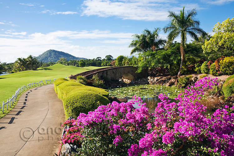 Paradise Palms Golf Course.  Kewarra Beach, Cairns, Queensland, Australia