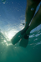 Snorkeller legs with flippers diving underwater, Punta Cana, Dominican Republic