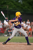 Zach Elliott of the Pavilion Golden Gophers during the Section V Class-C crossover game against the Keshequa Indians on June 3, 2007.  (Copyright Mike Janes Photography)
