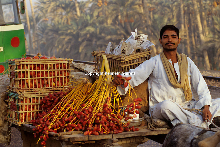 Market, produce, modern, Egypt's Old Kingdom; Daily life; Egypt, Saqqara