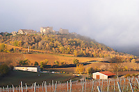 Roquetaillade hilltop village. Domaine de l'Aigle winery. Limoux. Languedoc. An early winter morning with mist still laying low and sunshine glowing golden. France. Europe. Vineyard.