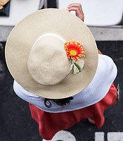 BALTIMORE, MD - MAY 20: A woman in a festive hat watches an undercard race from the grandstand on Preakness Stakes Day at Pimlico Race Course on May 20, 2017 in Baltimore, Maryland.(Photo by Douglas DeFelice/Eclipse Sportswire/Getty Images)