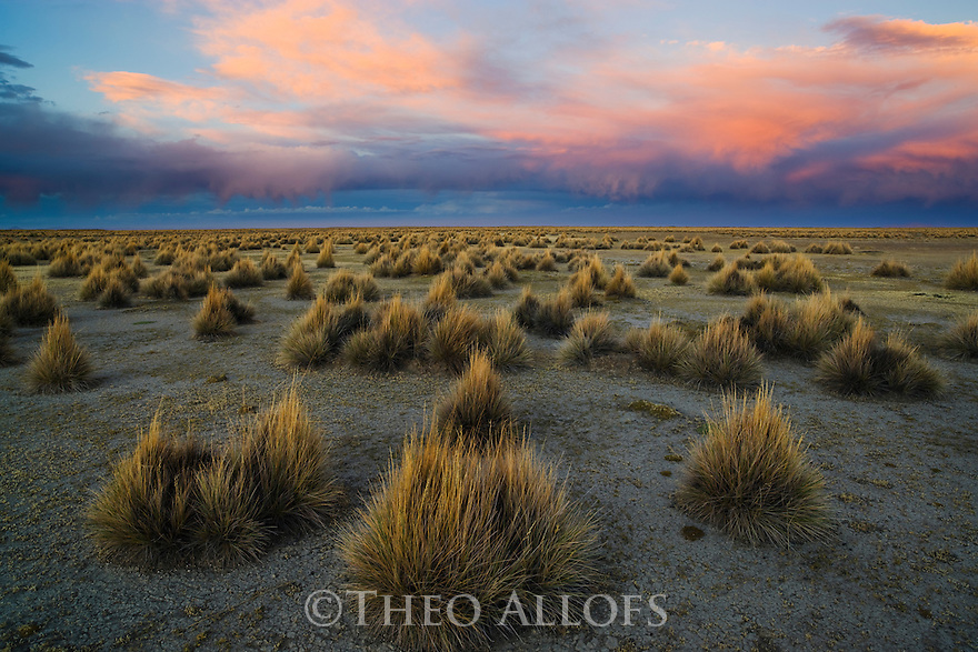 Bolivia, Altiplano, dramatic sunset above grassland north of Salar de Coipasa