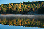 Early morning mist on Smith Lake in northern Idaho in the fall