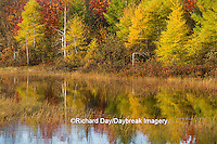64776-01505 Pond and fall color Alger County Upper Peninsula Michigan