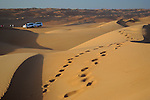 Wahiba Sands, desert in Oman, Middle East