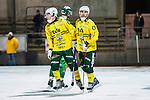 Stockholm 2013-12-03 Bandy Elitserien Hammarby IF - Ljusdals BK :  <br /> Ljusdal Tobias Bj&ouml;rklund har gratulerats av Ljusdal Kalle M&aring;rtensson efter sitt 4-10 m&aring;l <br /> (Foto: Kenta J&ouml;nsson) Nyckelord: