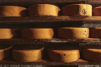 Europe/France/Midi-Pyrénées/09/Ariège/Env. de Castillon-en-Couserans/Ayet: Fromage en affinage dans la cave de la fabrique de fromage de Bethmale