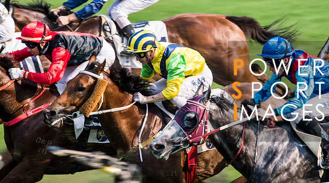 Horse Bullish Smart #11 ridden by Alvin Ng Ka-chun (yellow/blue cap) competes during the race 7 of HKJC Horse Racing 2017-18 at the Sha Tin Racecourse on 16 September 2017 in Hong Kong, China. Photo by Victor Fraile / Power Sport Images