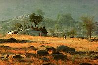 Mandara  village