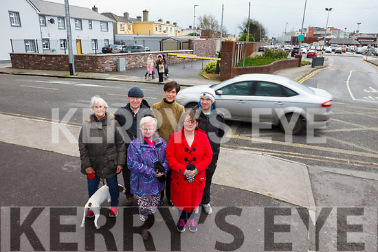 Tralee residents are calling on the council to install a pedestrian crossing in Rock Street Upper as they say it's impossible to cross the road due to heavy fast moving traffic. Pictured were: Frances Walsh, Christine Guerin, Moira Bolger, Michael Doran, Cllr. Norma Foley and Con Murphy.