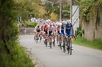 Team Deceuninck - Quick Step setting the pace<br /> <br /> 59th De Brabantse Pijl - La Flèche Brabançonne 2019 (1.HC)<br /> One day race from Leuven to Overijse (BEL/196km)<br /> <br /> ©kramon
